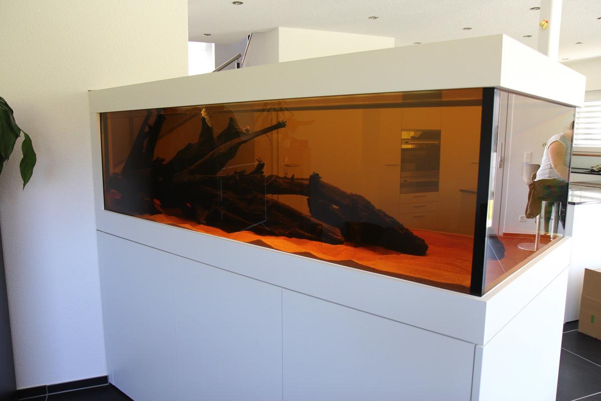 Pflanzenplan Aquarium 270x90cm | Zoohandlung